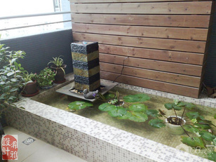 阳台比较宽敞,在这里做了一个水池,养养花草和鱼是个不错的地方